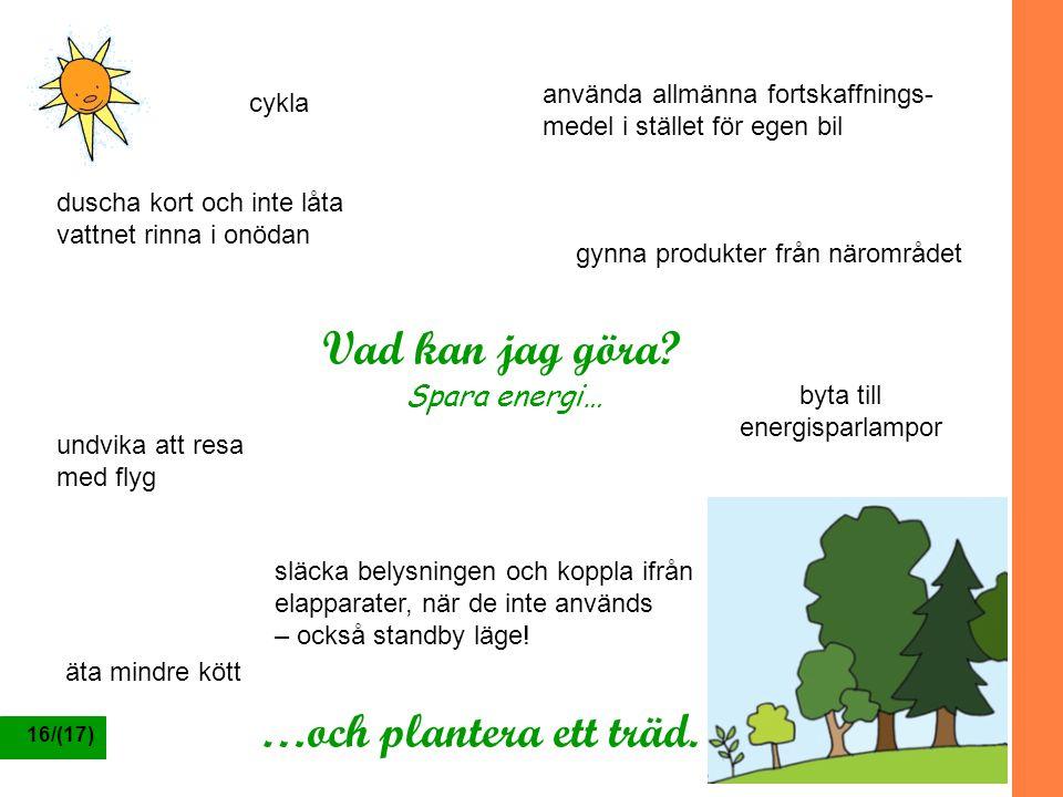 Vad kan jag göra …och plantera ett träd. Spara energi…