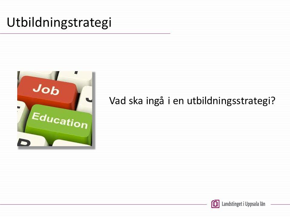 Utbildningstrategi Vad ska ingå i en utbildningsstrategi