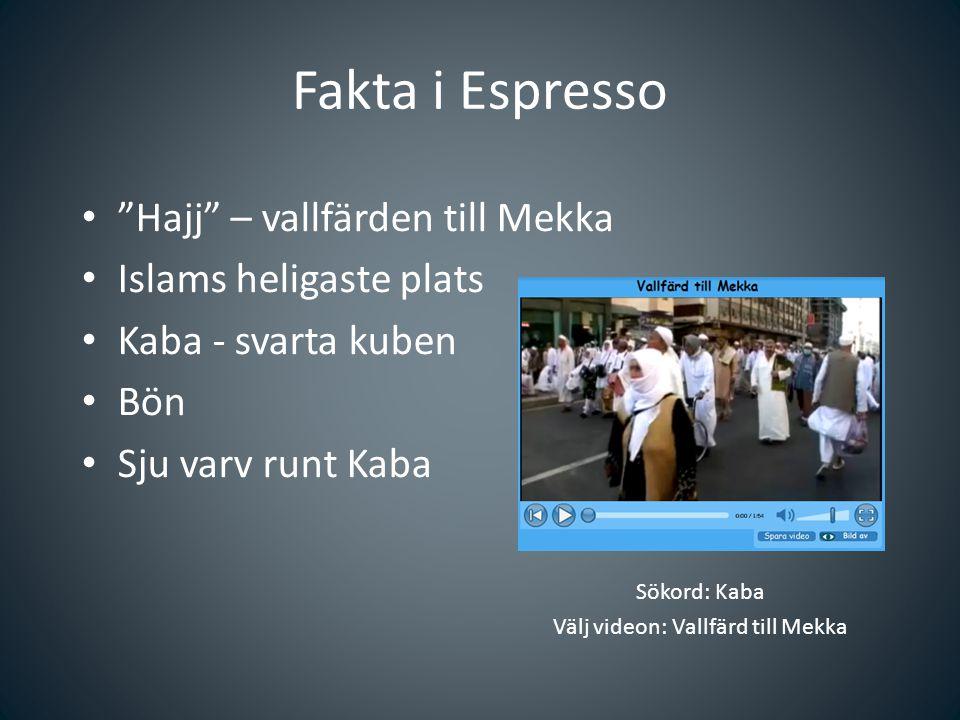 Sökord: Kaba Välj videon: Vallfärd till Mekka