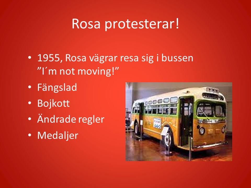 Rosa protesterar! 1955, Rosa vägrar resa sig i bussen I´m not moving! Fängslad. Bojkott. Ändrade regler.