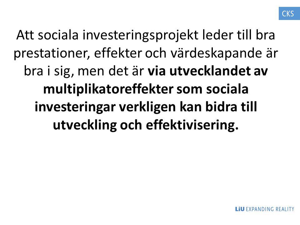 Att sociala investeringsprojekt leder till bra prestationer, effekter och värdeskapande är bra i sig, men det är via utvecklandet av multiplikatoreffekter som sociala investeringar verkligen kan bidra till utveckling och effektivisering.