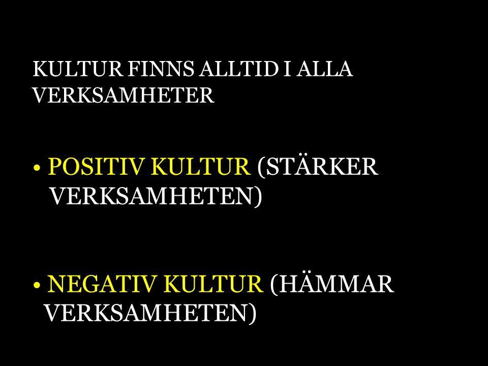 POSITIV KULTUR (STÄRKER VERKSAMHETEN)