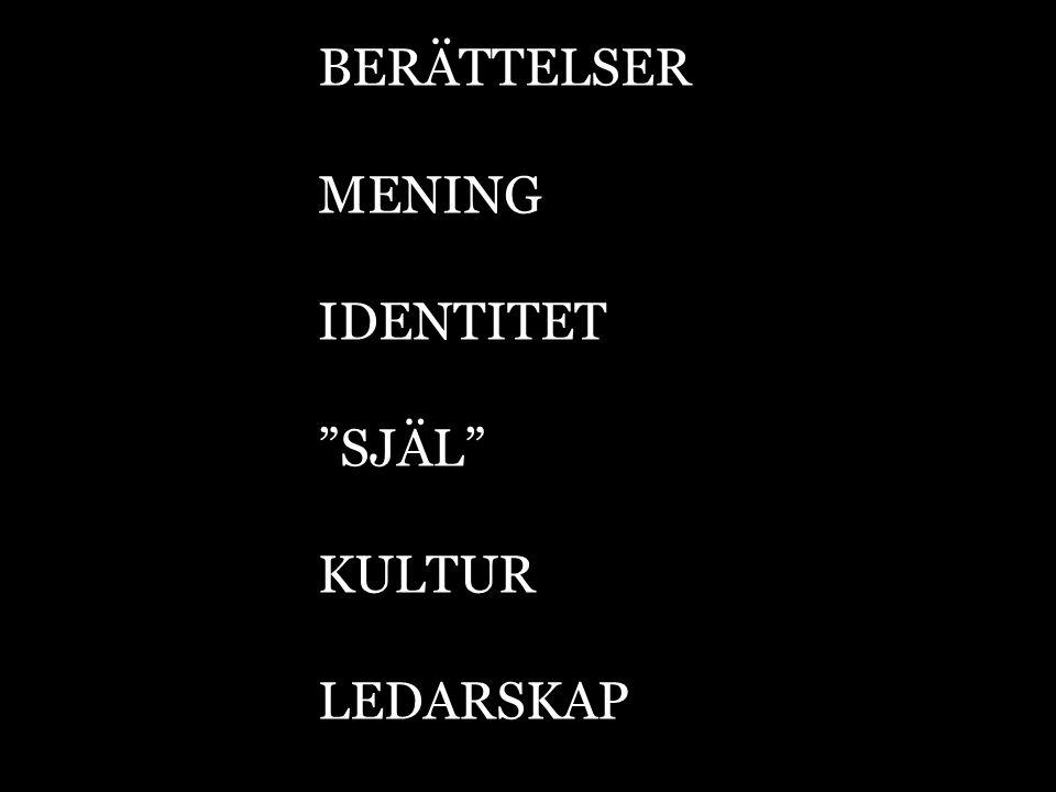 BERÄTTELSER MENING IDENTITET SJÄL KULTUR LEDARSKAP