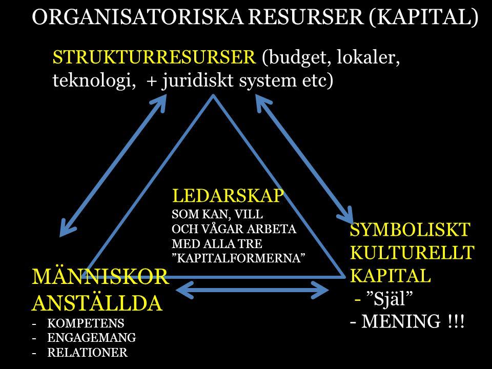 ORGANISATORISKA RESURSER (KAPITAL)