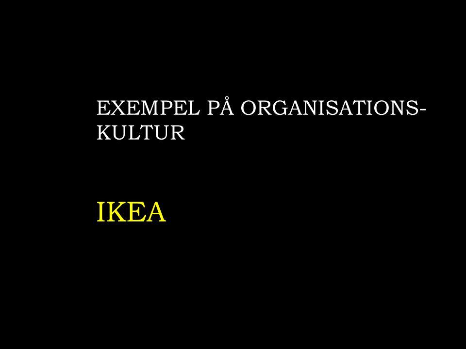 EXEMPEL PÅ ORGANISATIONS-