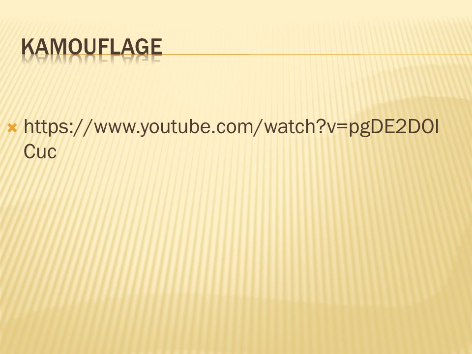 Kamouflage https://www.youtube.com/watch v=pgDE2DOICuc