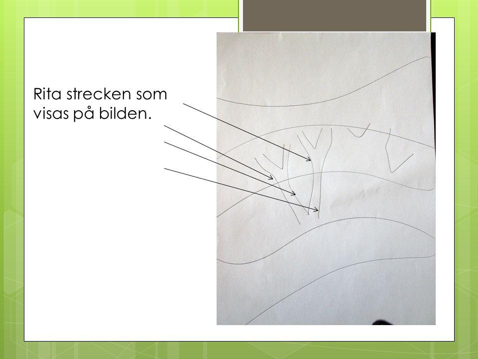 Rita strecken som visas på bilden.