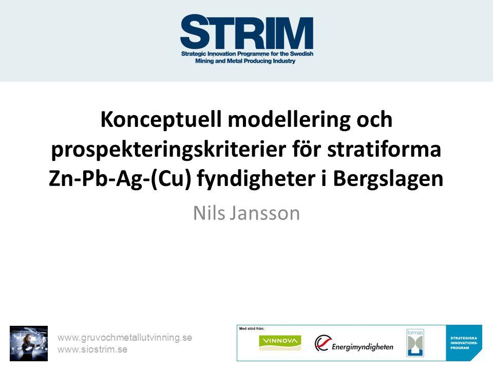 Konceptuell modellering och prospekteringskriterier för stratiforma Zn-Pb-Ag-(Cu) fyndigheter i Bergslagen