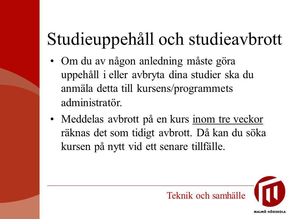 Studieuppehåll och studieavbrott
