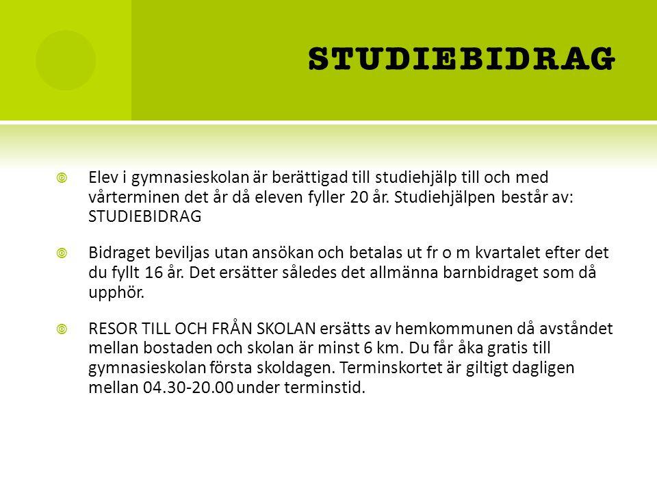 STUDIEBIDRAG