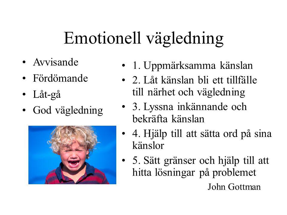 Emotionell vägledning