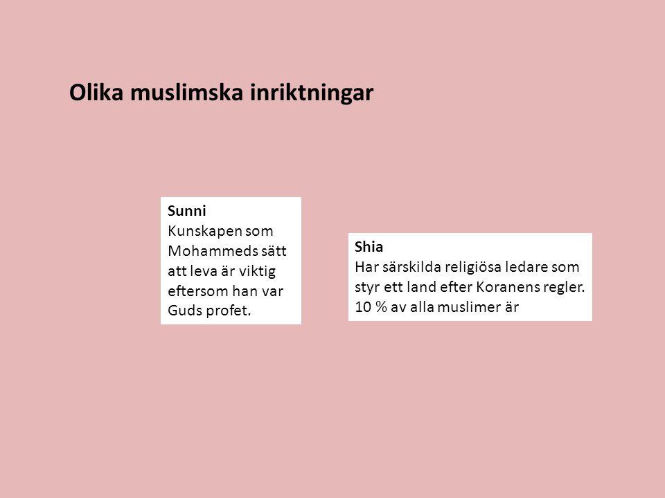 Olika muslimska inriktningar