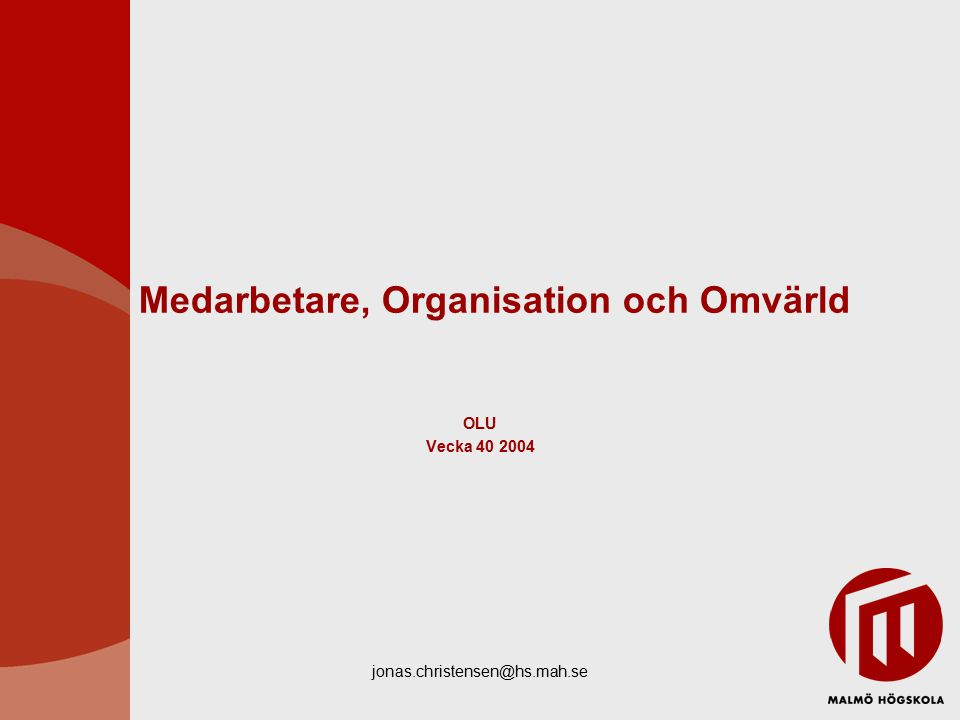Medarbetare, Organisation och Omvärld
