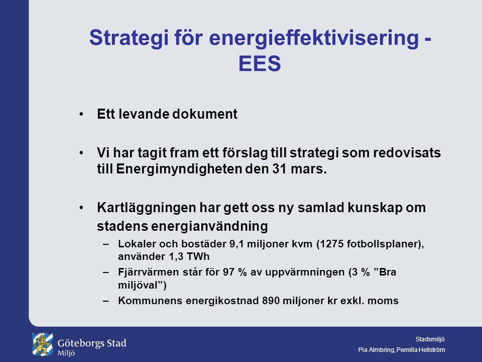 Strategi för energieffektivisering - EES