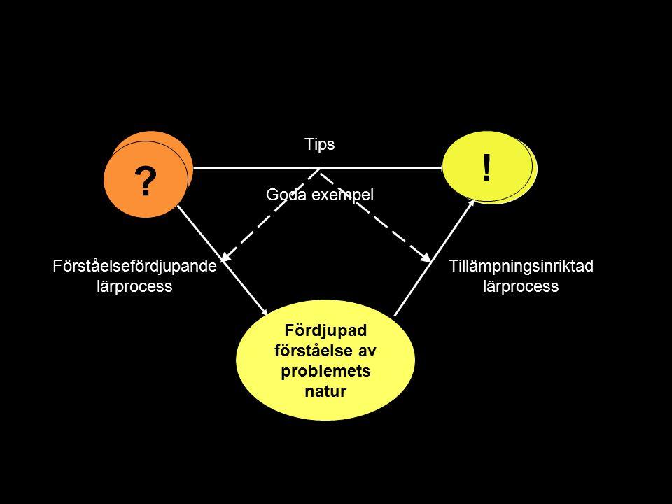 Fördjupad förståelse av problemets natur