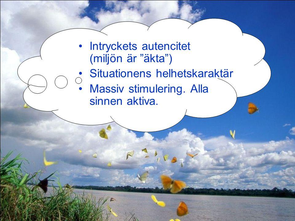 Intryckets autencitet (miljön är äkta )