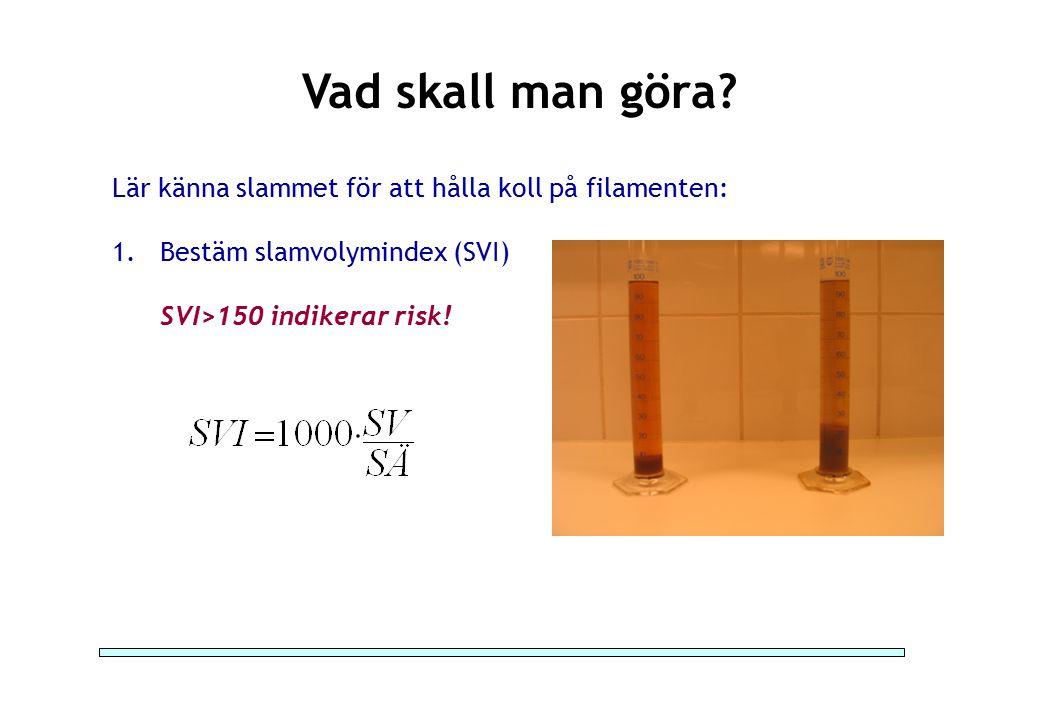 Vad skall man göra Lär känna slammet för att hålla koll på filamenten: Bestäm slamvolymindex (SVI)