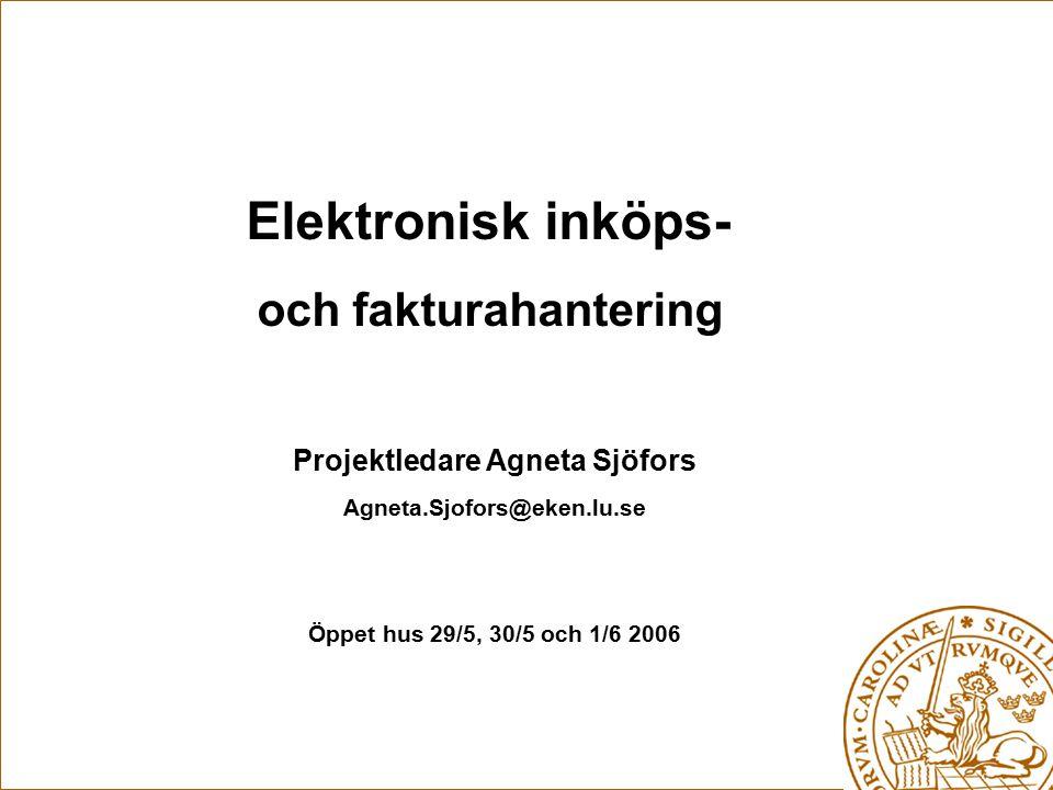 Projektledare Agneta Sjöfors
