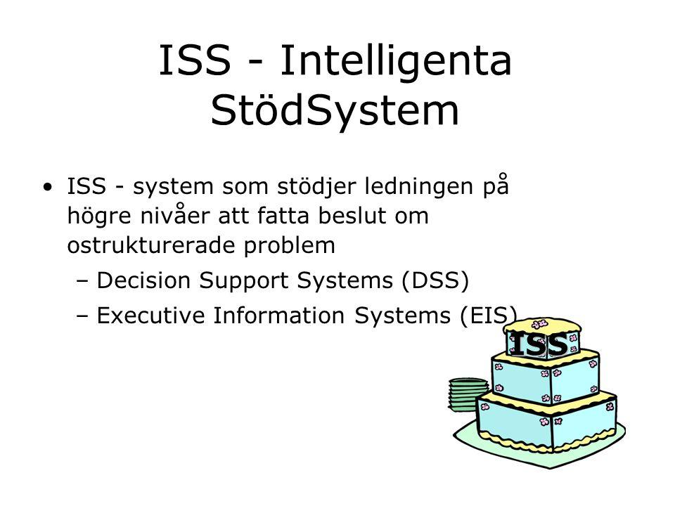 ISS - Intelligenta StödSystem