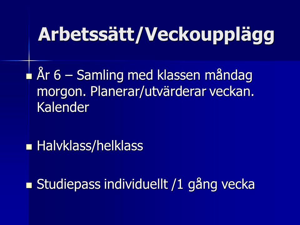 Arbetssätt/Veckoupplägg