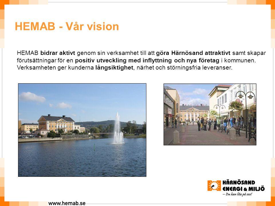2017-04-17 HEMAB - Vår vision.
