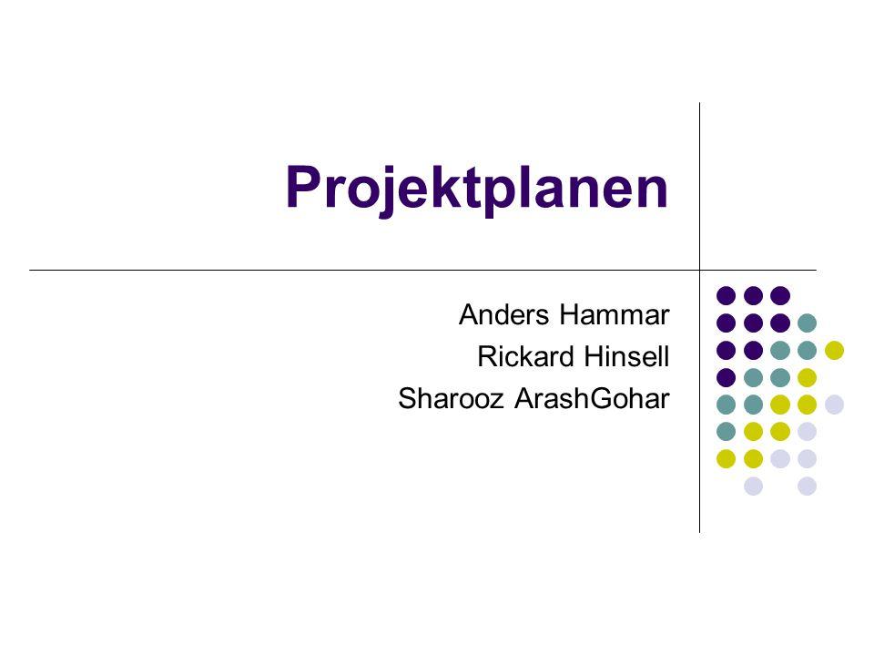 Anders Hammar Rickard Hinsell Sharooz ArashGohar