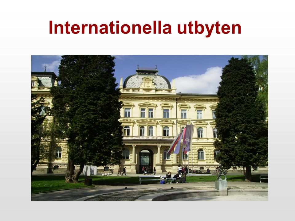 Internationella utbyten