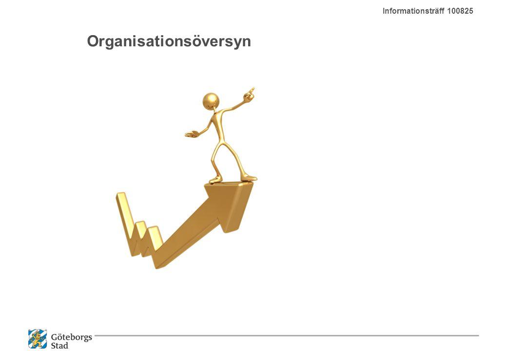Organisationsöversyn