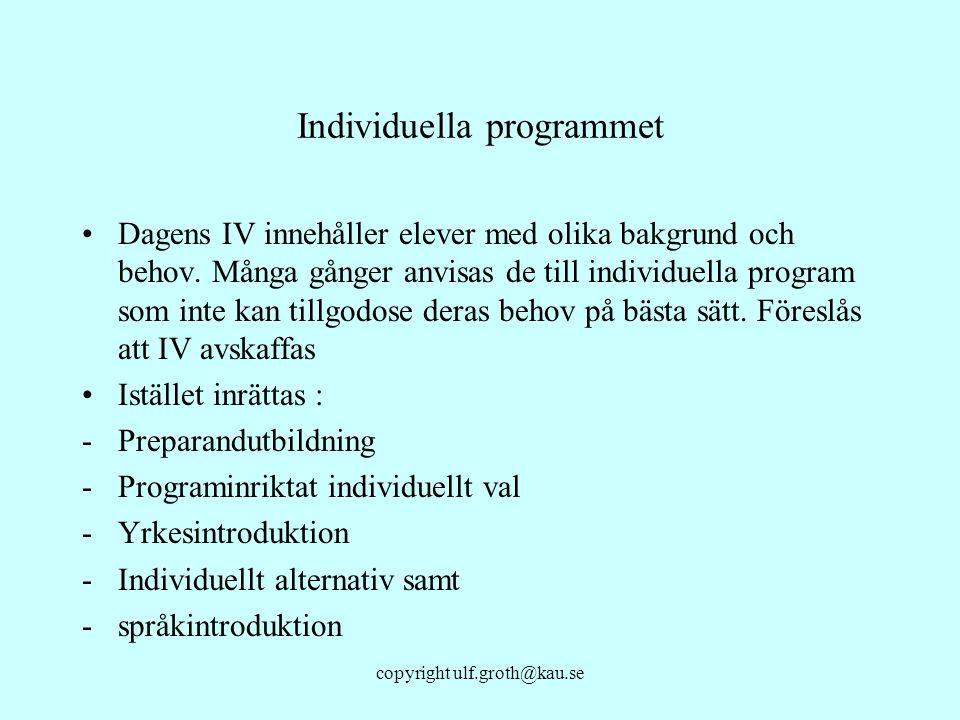 Individuella programmet