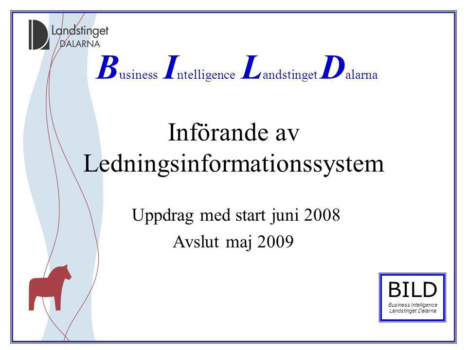Införande av Ledningsinformationssystem