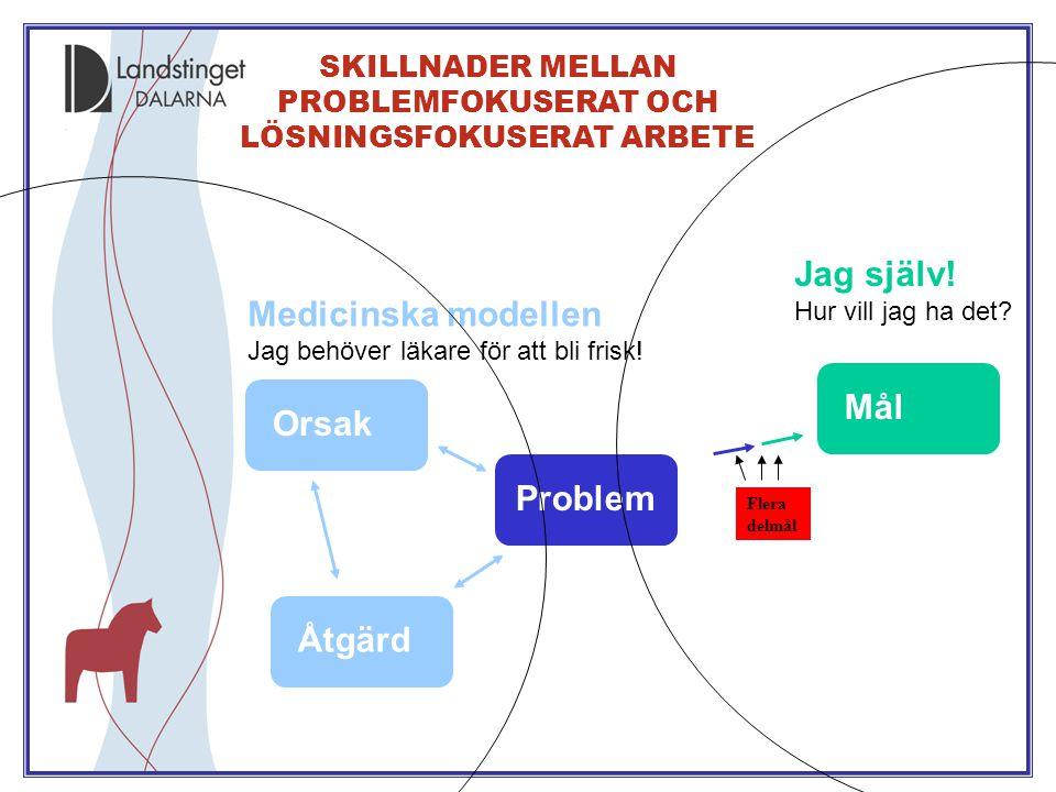 SKILLNADER MELLAN PROBLEMFOKUSERAT OCH LÖSNINGSFOKUSERAT ARBETE