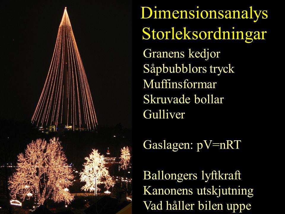 Dimensionsanalys Storleksordningar