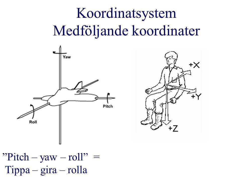 Koordinatsystem Medföljande koordinater