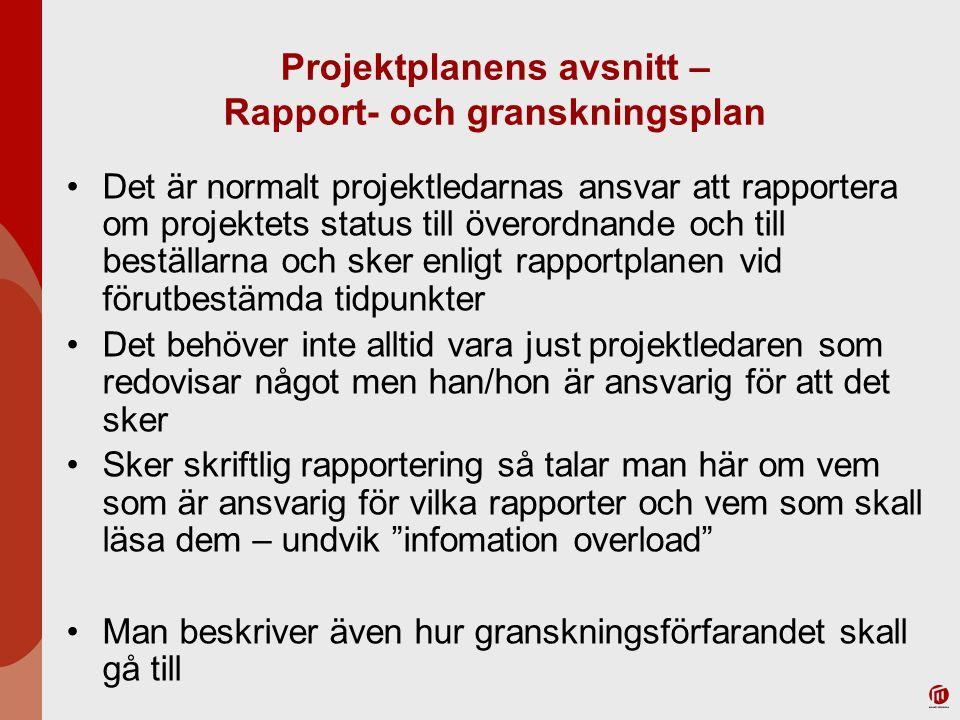 Projektplanens avsnitt – Rapport- och granskningsplan