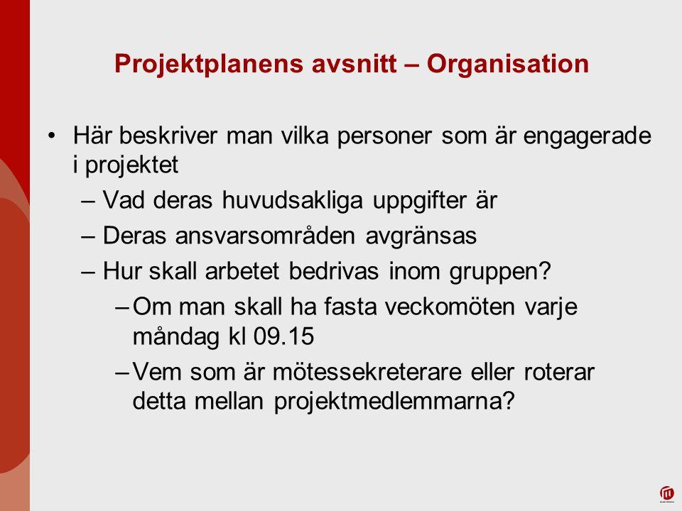 Projektplanens avsnitt – Organisation