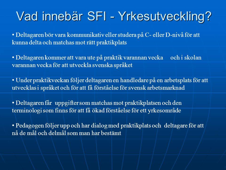 Vad innebär SFI - Yrkesutveckling