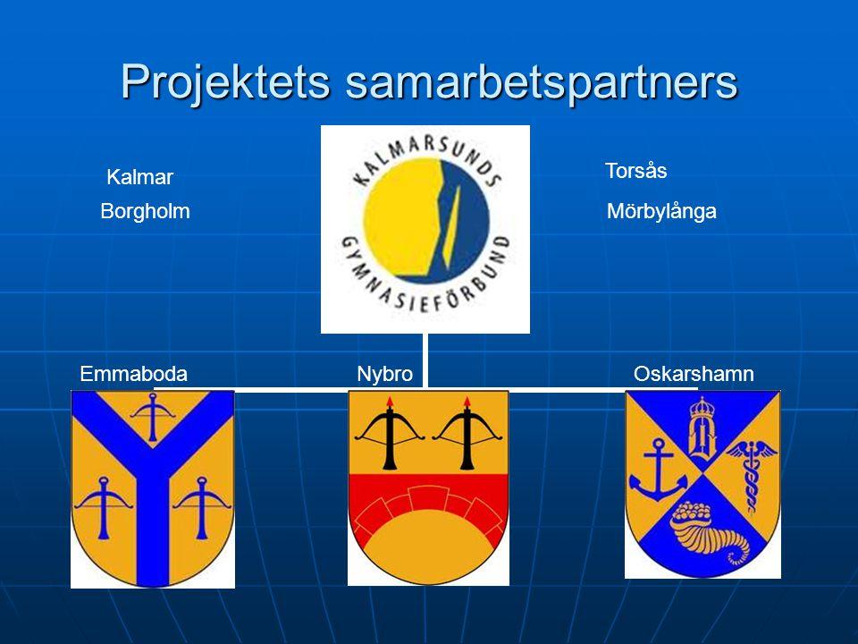 Projektets samarbetspartners