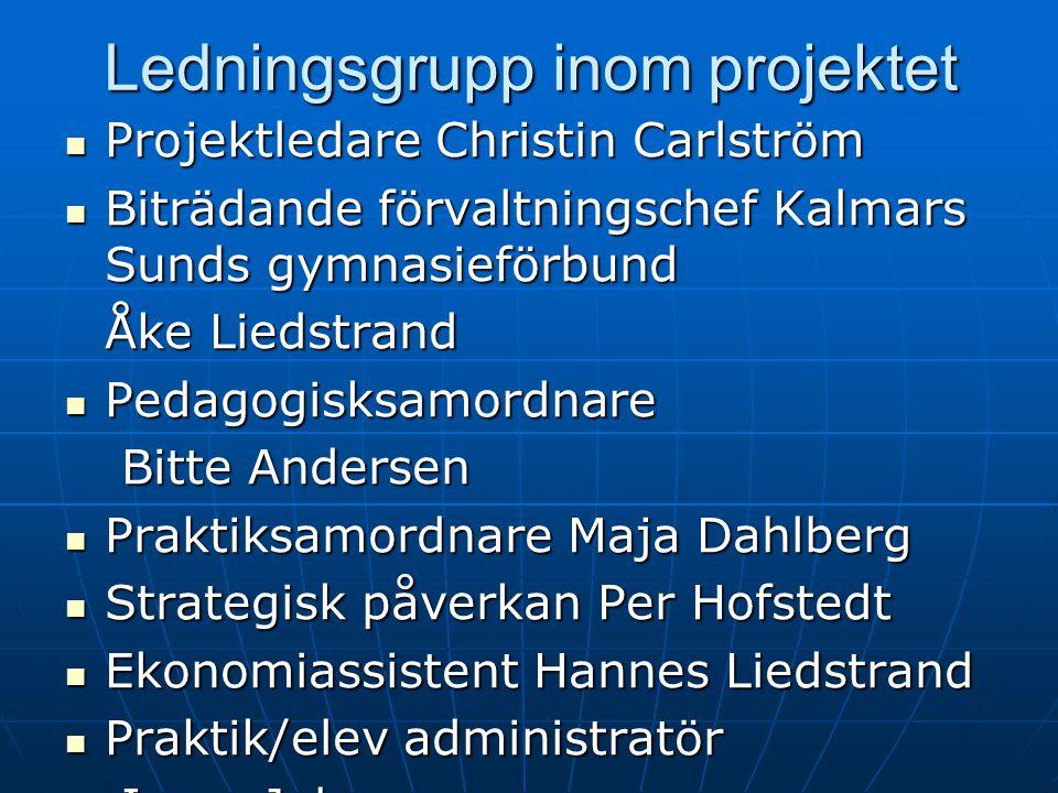 Ledningsgrupp inom projektet