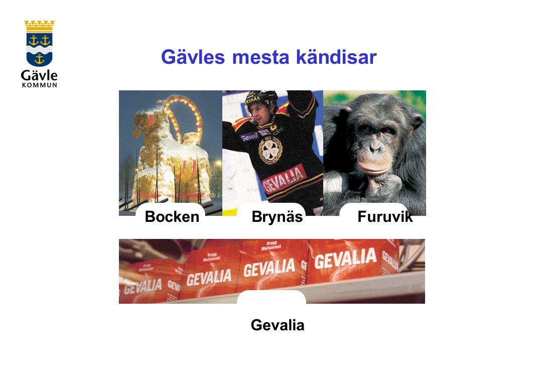 Gävles mesta kändisar Bocken Brynäs Furuvik Gevalia