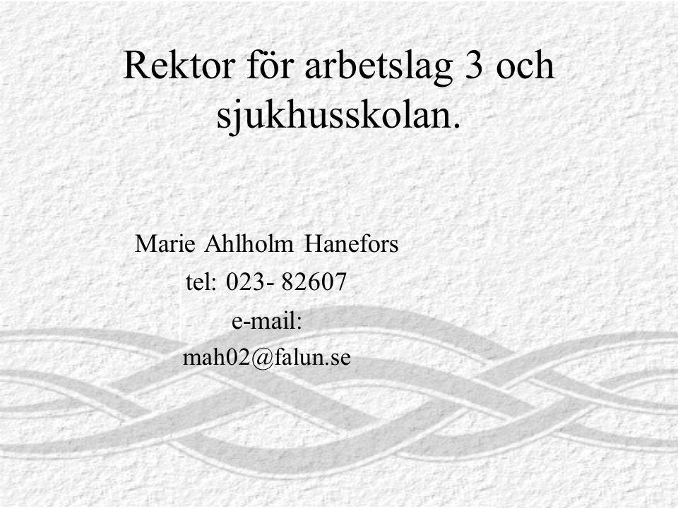 Rektor för arbetslag 3 och sjukhusskolan.