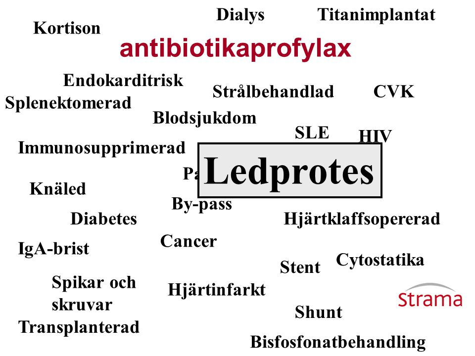 Ledprotes antibiotikaprofylax Dialys Titanimplantat Kortison