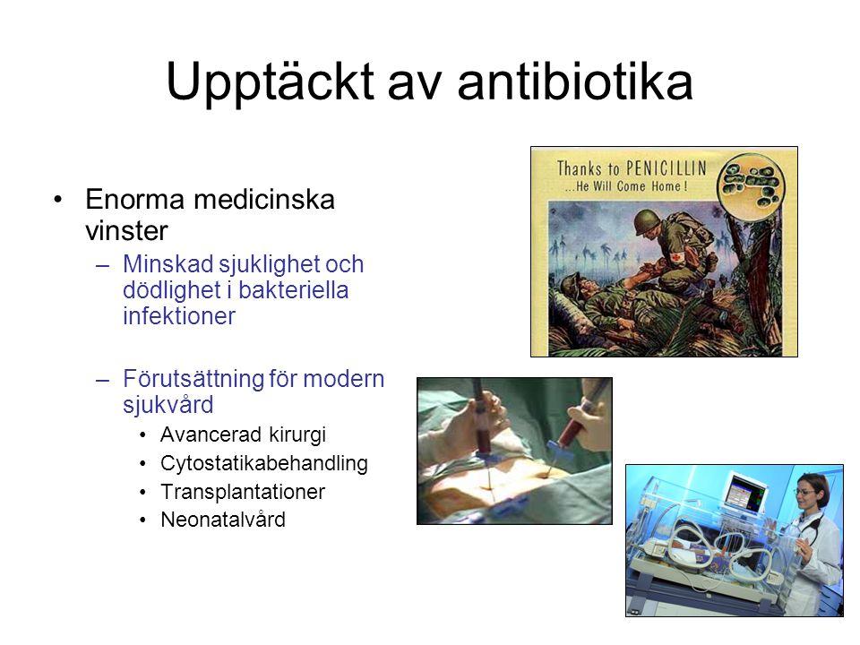 Upptäckt av antibiotika
