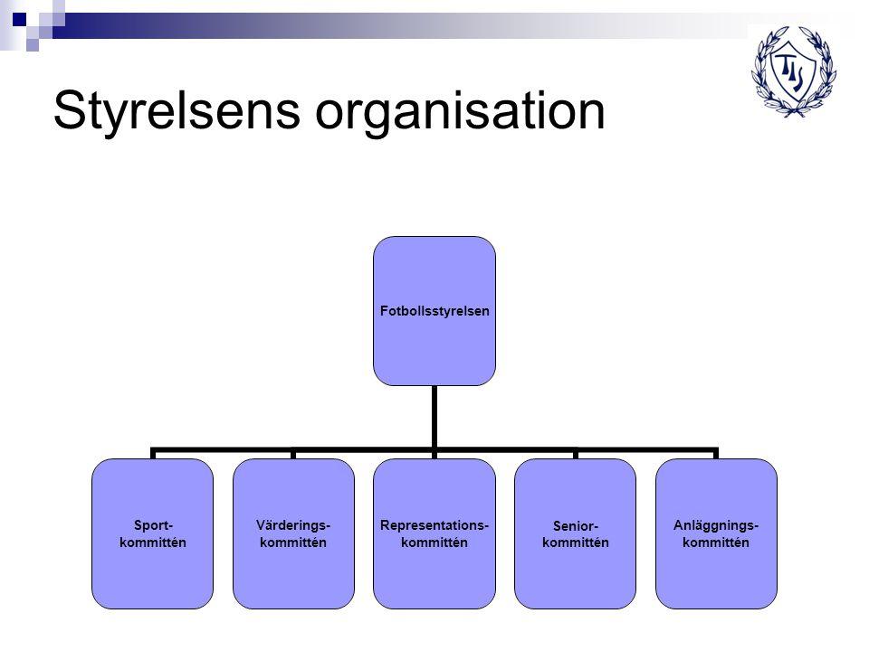 Styrelsens organisation