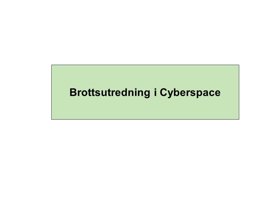 Brottsutredning i Cyberspace