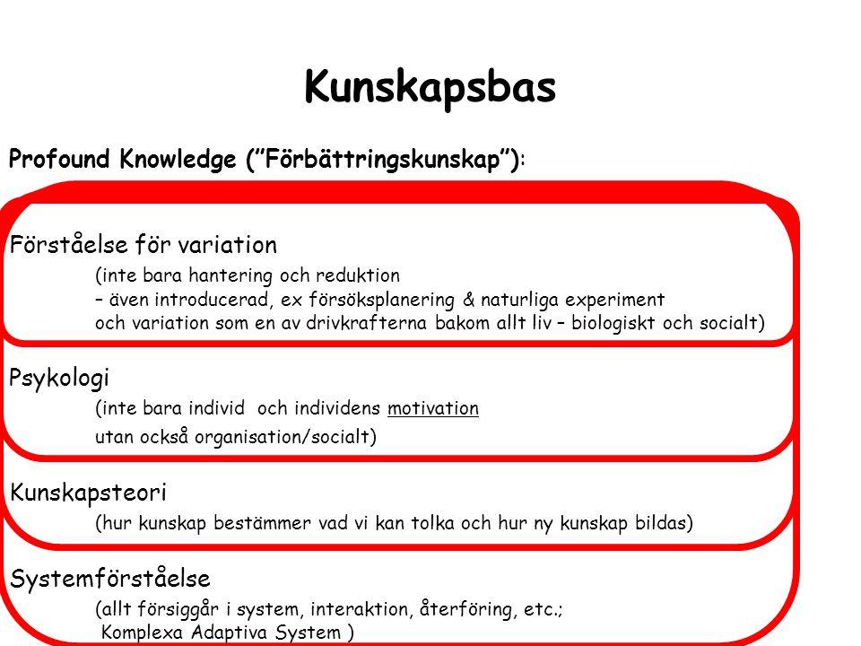 Kunskapsbas Profound Knowledge ( Förbättringskunskap ):