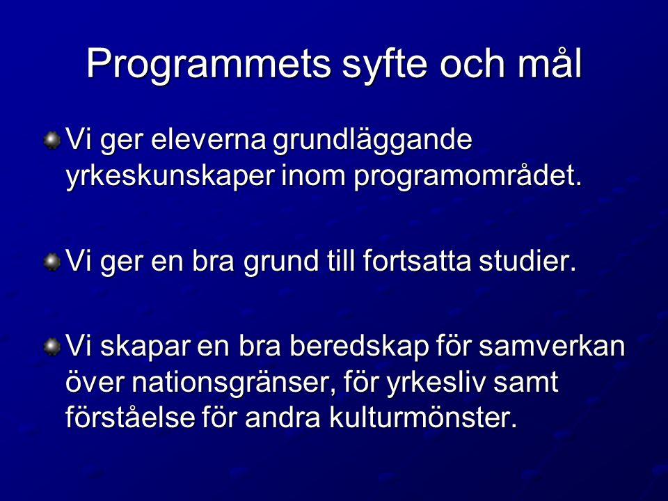 Programmets syfte och mål