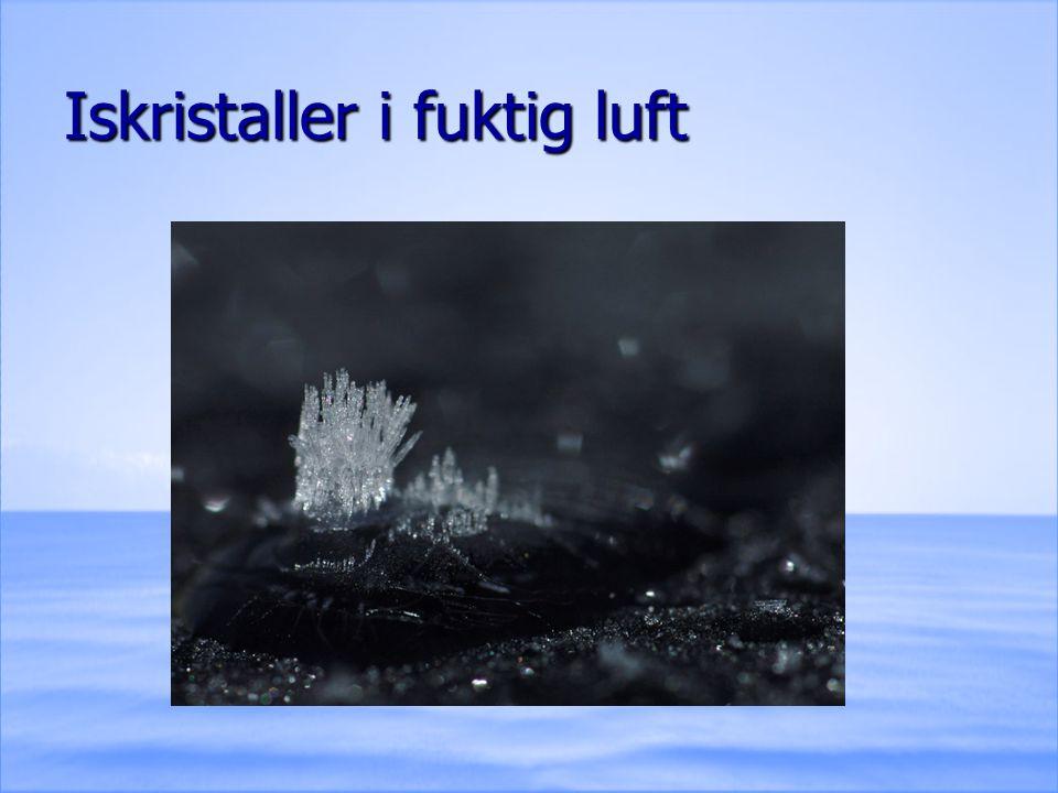 Iskristaller i fuktig luft