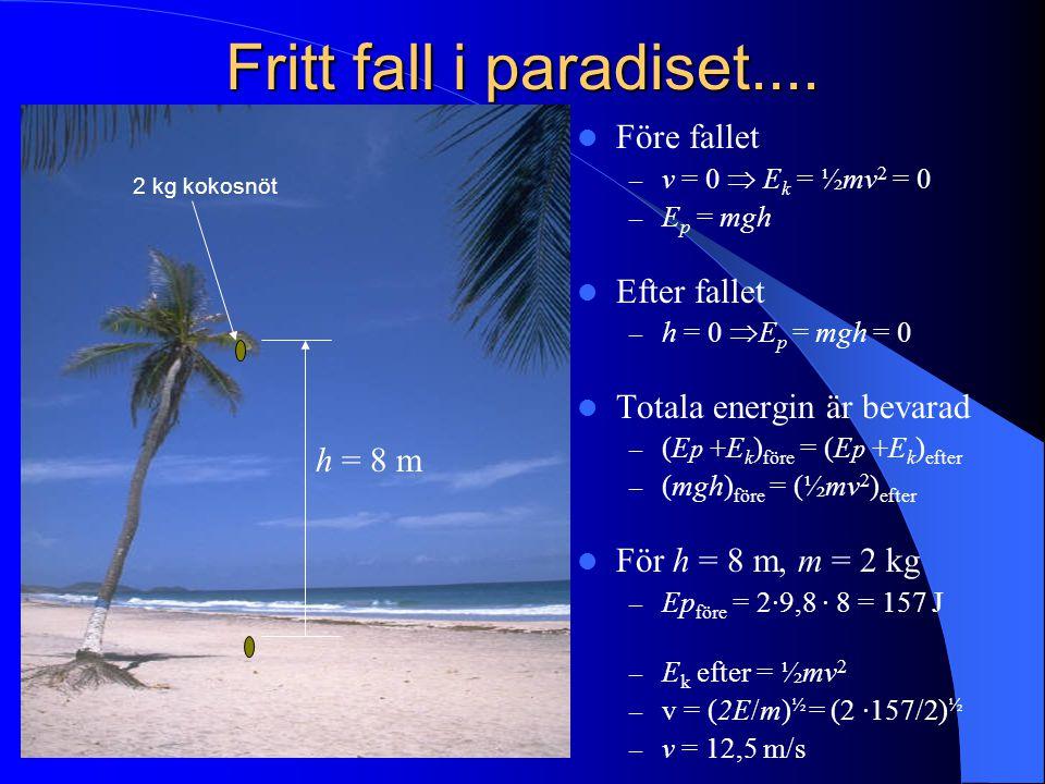 Fritt fall i paradiset.... Före fallet Efter fallet