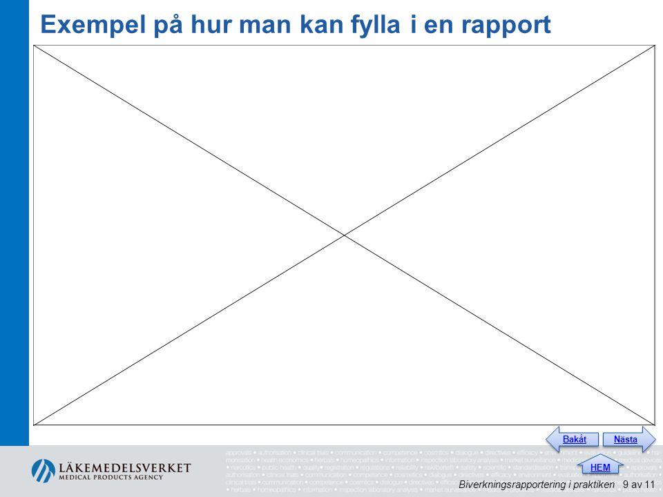 Exempel på hur man kan fylla i en rapport