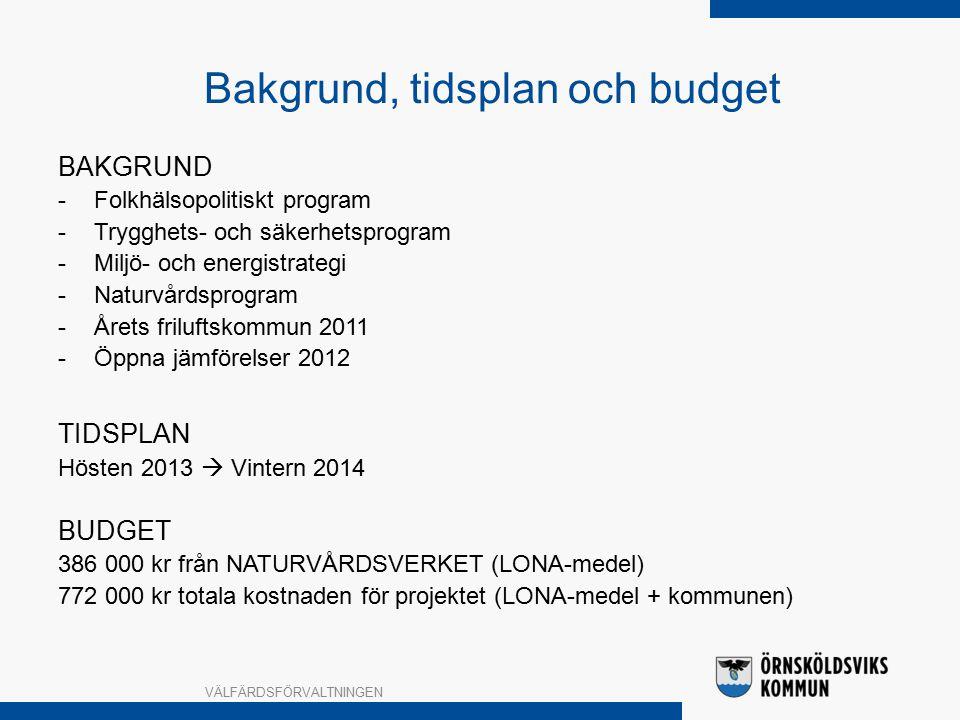 Bakgrund, tidsplan och budget